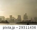 モヤ お台場 雨上がりの写真 29311436