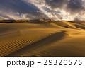 Beautiful views of the desert landscape. Gobi 29320575