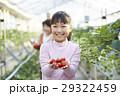 子供 女の子 笑顔の写真 29322459