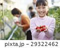 人物 子供 女の子の写真 29322462
