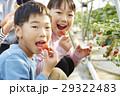 家族 子供 女の子の写真 29322483
