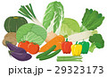 野菜 ベジタブル イラストのイラスト 29323173