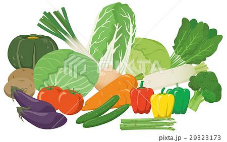 野菜の盛り合わせイメージイラストセット 29323173