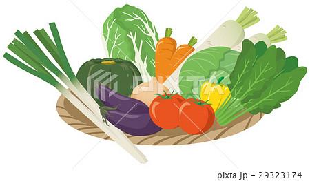 野菜のイメージイラストセット_カゴ入り 29323174