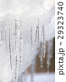 冬景色、雪景色、つらら、自然風景 29323740