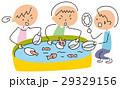 金魚すくい 夏祭り 金魚のイラスト 29329156