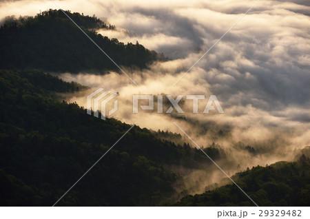 屈斜路湖にかかる雲海 29329482