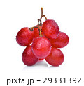 fresh red grapes with water drops isolated  29331392