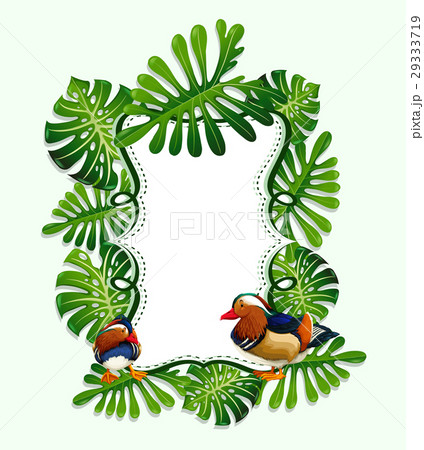 Frame design with leaves and birdのイラスト素材 [29333719] - PIXTA