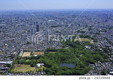 石神井公園上空/空撮 29339888