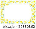 レモン レモン柄 柑橘類のイラスト 29350362