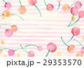 背景素材 水彩 サクランボ 29353570
