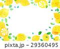 レモン レモン柄 柑橘類のイラスト 29360495
