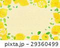 レモン レモン柄 柑橘類のイラスト 29360499