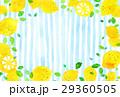 レモン レモン柄 模様のイラスト 29360505