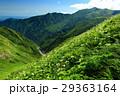 飯豊連峰稜線のお花畑と飯豊本山の眺め 29363164