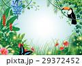 森の風景 29372452