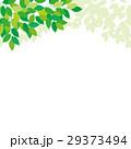 新緑 エコイメージ 29373494