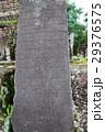 ミーソン遺跡の石碑 29376575