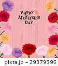 母の日 カーネーション ベクターのイラスト 29379396