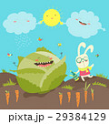 Little rabbit and cabbage field 29384129