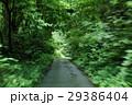 山道を走る風景 29386404