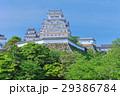 新緑の姫路城 29386784