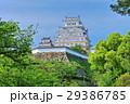 新緑の姫路城 29386785