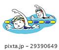 スポーツ:水泳 29390649