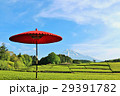 富士山 青空 茶畑の写真 29391782