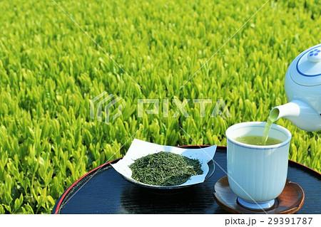 初夏の茶畑と淹れ立ての新茶 29391787