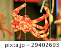 【沼津市戸田】深海魚のつるし飾り 29402693