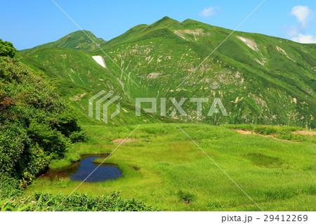 夏の飯豊連峰稜線・天狗の庭の湿原 29412269