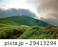 山 夏山 草原の写真 29413294