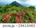 山 尾根 夏山の写真 29413463