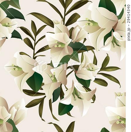 bougainvillea seamless pattern2のイラスト素材 [29414340] - PIXTA