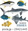 魚 魚類 熱帯のイラスト 29421445