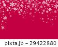 雪の結晶 29422880