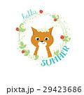 Funny smiling little child fox  29423686