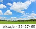 夏の青空と新緑の公園広場 29427465