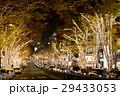 ショッピング街のイルミネーション(表参道・原宿) 29433053