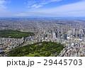 都市風景/新宿御苑上空/Aerial view 29445703