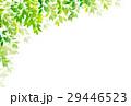 新緑 葉 植物のイラスト 29446523
