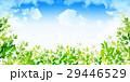 新緑 葉 緑のイラスト 29446529