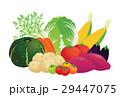 野菜 29447075