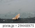 景色 風景 アイスランド 29448975