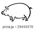 豚 水彩 水墨画のイラスト 29450570