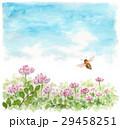ミツバチ 蜂 レンゲ畑のイラスト 29458251