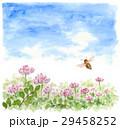 ミツバチ 蜂 レンゲ畑のイラスト 29458252