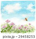 ミツバチ 蜂 レンゲ畑のイラスト 29458253